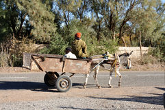 Mule cart in a Moroccan village Royalty Free Stock Photo