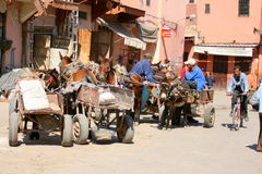 Mule carts parked in town square royalty free stock image