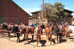 USA/Grand Canyon: Mule Corral  Stock Image