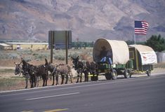 Mule team and wagon. On freeway near Bishop, CA Stock Photos