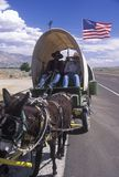 Mule team and wagon on freeway near Bishop, CA Stock Photography