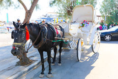 Mules of Hydra island - Greece islands Stock Photo