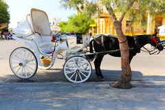 Mules of Hydra island - Greece islands Stock Photography