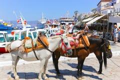 Mules of Hydra island - Greece islands Stock Photos