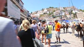 Mules of Hydra island - Greece islands stock video footage