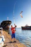 Mulet de pêcheur Images stock