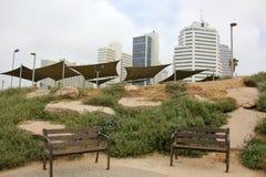 Mulet i Tel Aviv Royaltyfri Foto