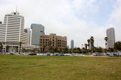Mulet i Tel Aviv Arkivfoto