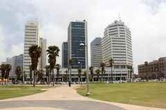 Mulet i Tel Aviv Royaltyfria Foton