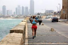 Mulet i Tel Aviv Arkivfoton