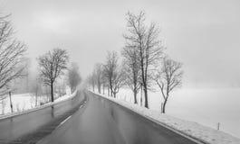 Mulet vinterlandskap royaltyfri fotografi