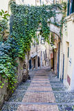 Muletrack de Caratheristic dans la vieille ville de la Ligurie Photo libre de droits