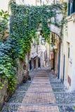 Muletrack di Caratheristic in vecchia città della Liguria Fotografia Stock Libera da Diritti