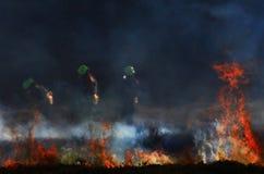 Mulfra-Hügelfeuer 2 Stockfoto