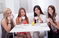Mulher à moda que come o café Foto de Stock Royalty Free
