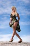 Mulher à moda 'sexy' imagens de stock