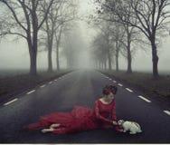 Mulher adorável que alimenta o coelho selvagem Foto de Stock Royalty Free
