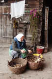 A mulher adulta corta batatas Fotos de Stock Royalty Free