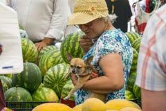 Mulher adulta que guarda um cão pequeno que compre melancias no bazar fotografia de stock