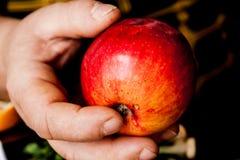 Mulher adulta que oferece uma maçã vermelha Fotos de Stock Royalty Free