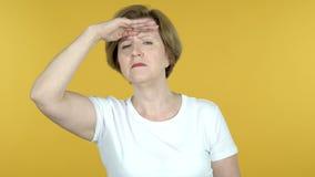 Mulher adulta que procura a possibilidade nova, fundo amarelo video estoque