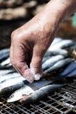 Mulher adulta que salga algumas sardinhas em uma grade Imagem de Stock