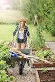 Mulher adulta que trabalha no jardim vegetal Fotos de Stock