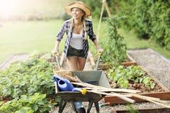 Mulher adulta que trabalha no jardim vegetal Imagem de Stock Royalty Free