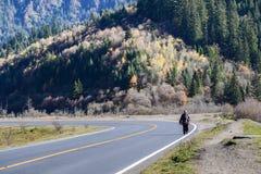 A mulher adulta toma seu fitoterapia na borda da estrada da estrada Fotos de Stock