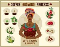 A mulher africana é um fazendeiro do café com uma cesta de bagas de café na exploração agrícola do café Fotos de Stock Royalty Free