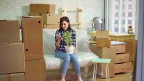A mulher alegre usa o telefone que senta-se no sofá após mover-se no apartamento moderno video estoque