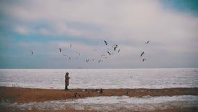 A mulher alimenta as gaivotas com fome que voam sobre o mar Gelo-coberto congelado Movimento lento video estoque