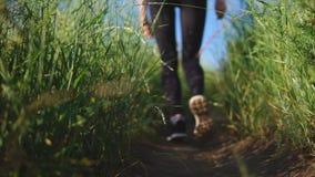 A mulher anda acima do trajeto em uma inclinação com uma grama verde selvagem vídeos de arquivo