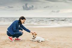 A mulher anda com o cão na costa Imagem de Stock Royalty Free