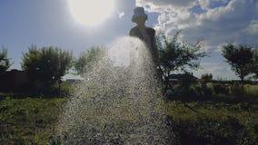 Mulher animador na água de derramamento de Panamá em seus vegetais no aunset no slo-mo filme