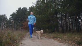 Mulher apta desportiva com o cão que movimenta-se na floresta do outono video estoque