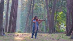 Mulher asiática com o violino na floresta do pinho na manhã da luz solar video estoque