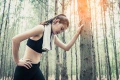 Mulher asiática da beleza que cansa-se de movimentar-se na carne sem gordura da floresta na árvore Elementos de toalha e de suor  foto de stock royalty free