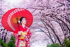 Mulher asiática que veste o quimono e a flor de cerejeira tradicionais japoneses na mola, Japão imagem de stock