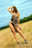 Mulher atrativa Foto de Stock