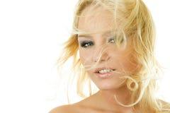 Mulher atrativa com cabelo fly-away Imagem de Stock Royalty Free