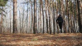 Mulher atrativa do ajuste que corre em Forest Path através das árvores e dos arbustos filme