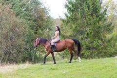 Mulher atrativa elegante que monta um prado do cavalo Imagem de Stock Royalty Free