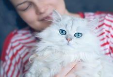 Mulher atrativa nova com seu gato de cabelos compridos branco bonito Imagem de Stock Royalty Free