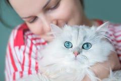 Mulher atrativa nova que guarda o gato de cabelos compridos branco lindo Imagens de Stock