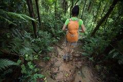 Mulher Backpacking que caminha na fuga na floresta úmida foto de stock