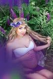 Mulher bonita cercada pelo campo de flores Fotos de Stock Royalty Free