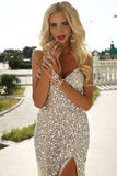 Mulher bonita com cabelo louro no vestido luxuoso e na joia Fotos de Stock