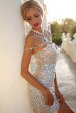 Mulher bonita com cabelo louro no vestido luxuoso e na joia Foto de Stock Royalty Free