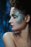 Mulher bonita com composição brilhante do glitter fotografia de stock royalty free